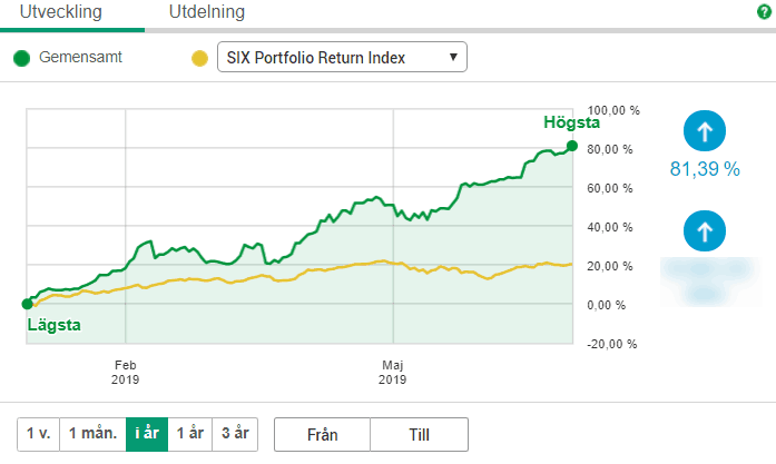 Första halvåret för 2019 för placeringar i aktier, index och guld